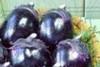 16044_banquetmenu_cookpicture_2005081615_1